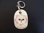 Chinchilla Keyring