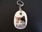 Patched Tabby Cat Keyring