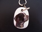Pointer Keyring